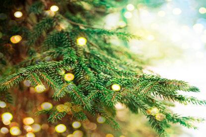 Kassiopeia toivottaa hyvää joulua ja onnelista uutta vuotta 2021!