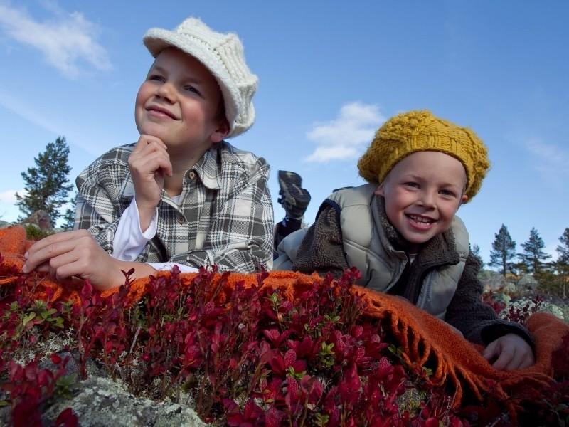 Lapset makoilemassa Lapin luonnossa kesälomalla Levillä.